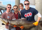 Gold Coast Fishing Videos Movies Pictures Images